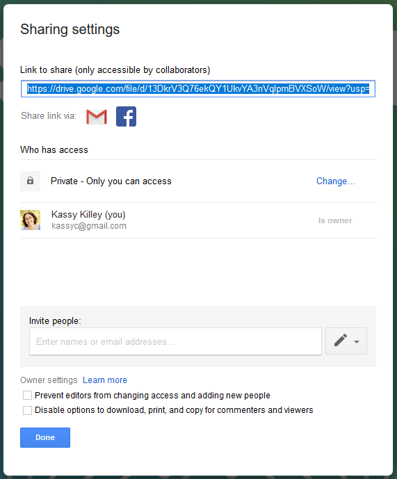 google drive sharing options